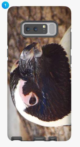 African Penguin Samsung Phone Case (Original)