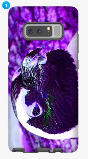 African Penguin Samsung Phone Case (Color)
