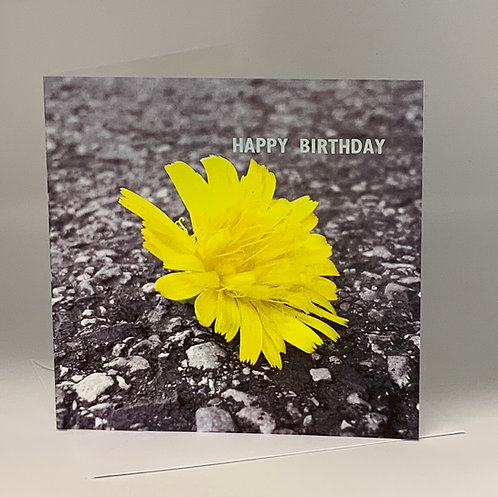 Birthday Card - Yellow Flower - ColourSplash Collection
