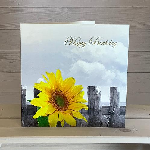 Birthday Card - Sunflower - ColourSplash Collection