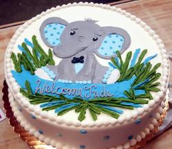 Elephant Baby 36