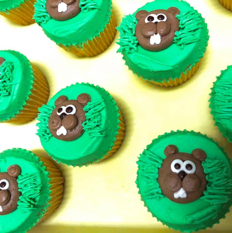 Beaver Cupcakes 13
