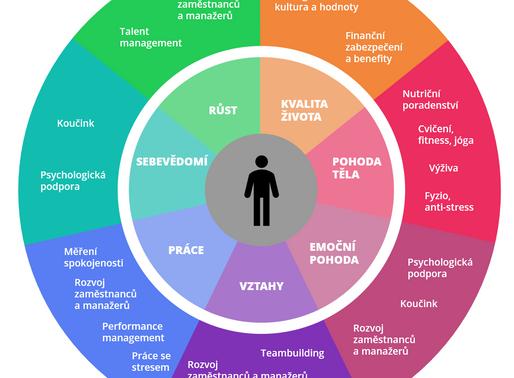Firemní wellbeing v příkladech