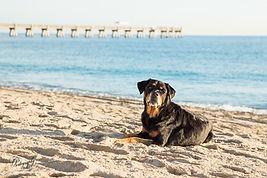 2019_11_27 Malakai Beach-151.JPG