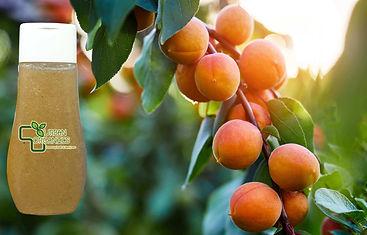 apricot scrub face wash urban organics.j