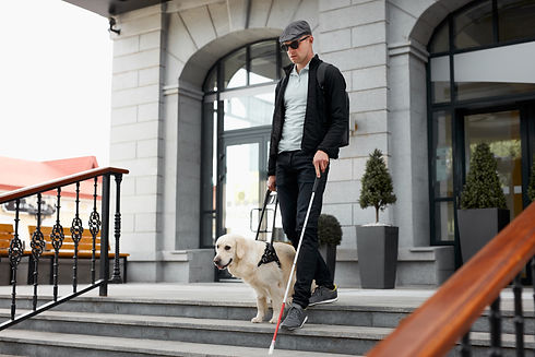 blind man with dog and walking stick.jpg