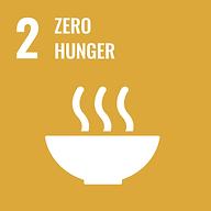 SDG 2 Yellow Zero Hunger