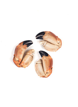 crab claws cooked