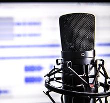 microphone-338481_1920_edited.jpg