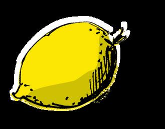 Zitrone_Zeichnung von Ilka Schmid.png