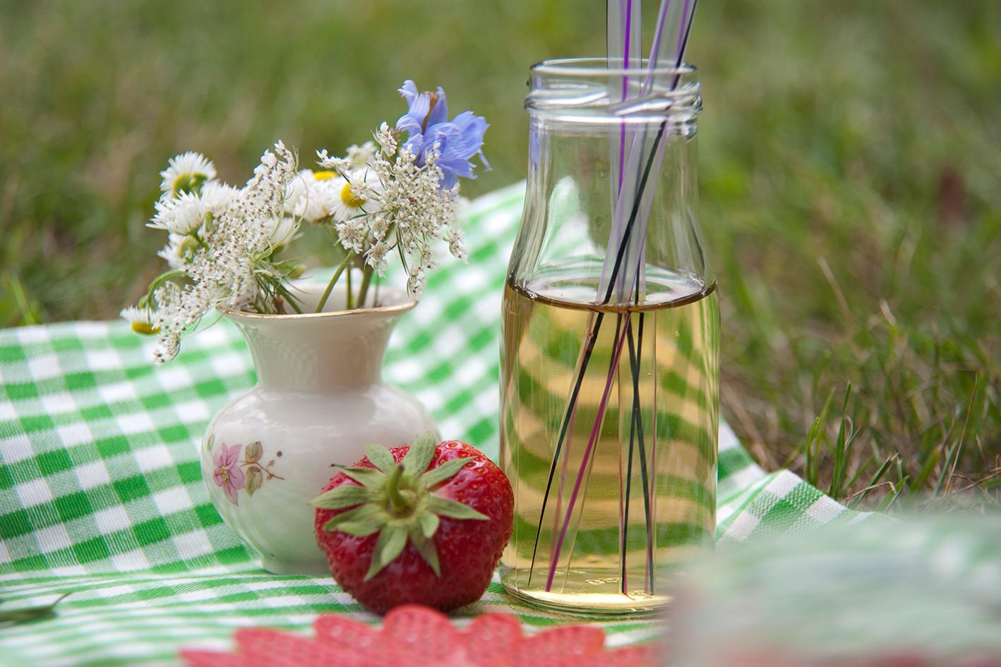 Blume-Erdbeere.jpg