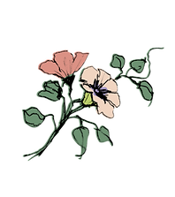 Blume rose 2.png