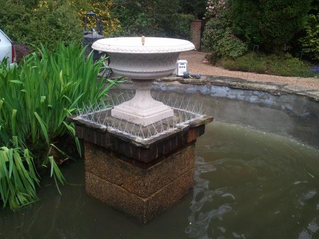 pond fixing