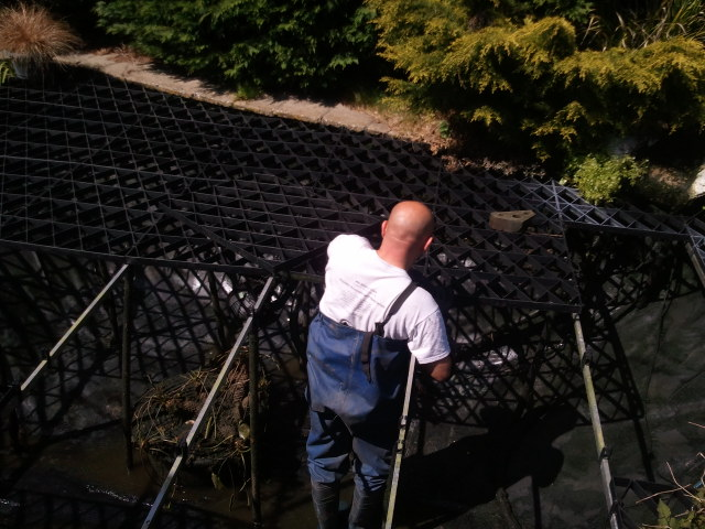 pond maintenance west chiltington