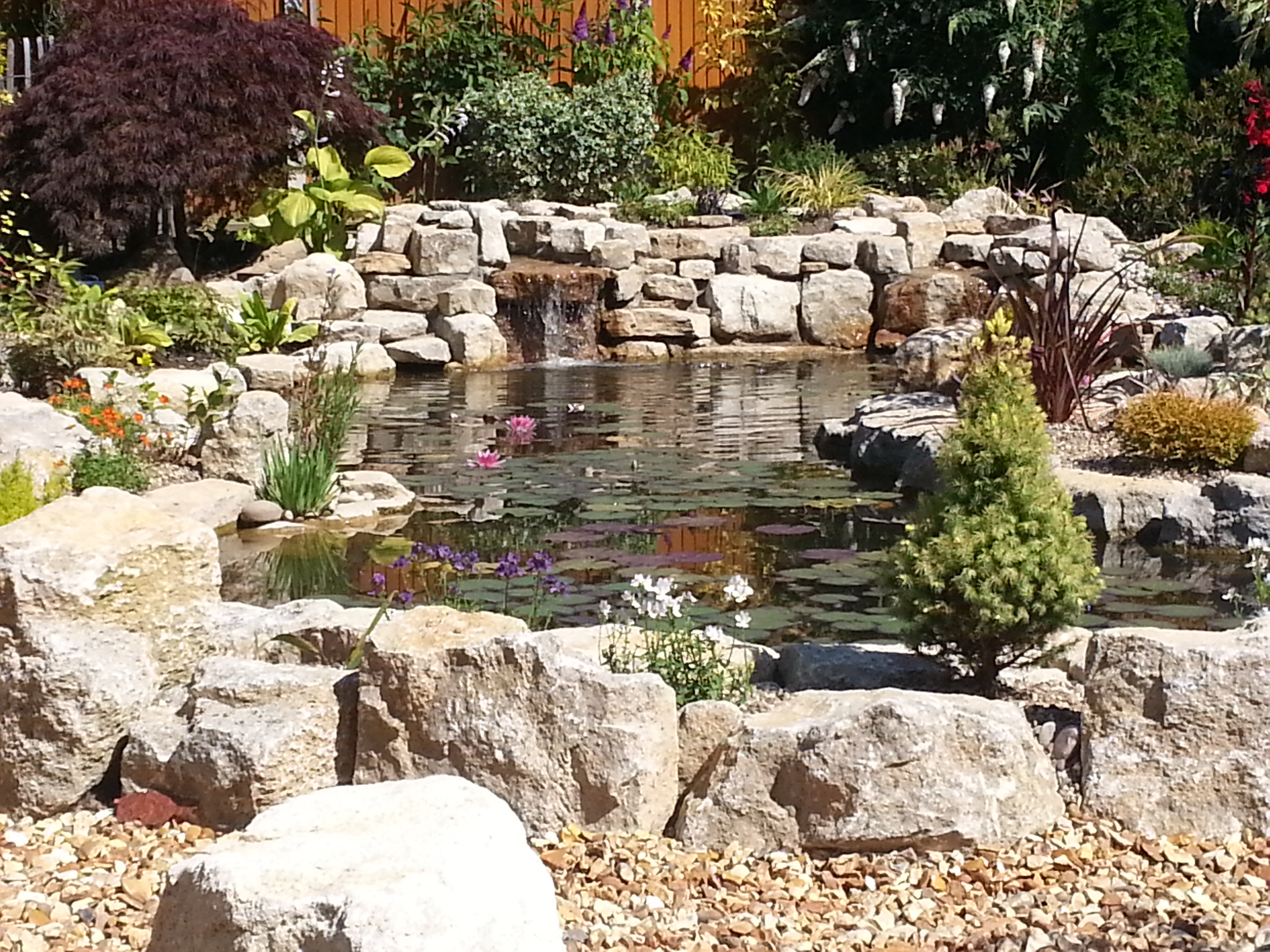 Waterfalls pond Horsham