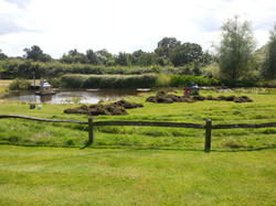 Pond weed removal.
