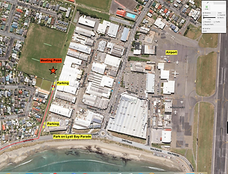 Lyall Bay Meeting Point.png