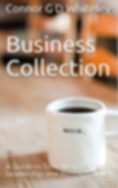 BUSINESS COLLECTION.PNG