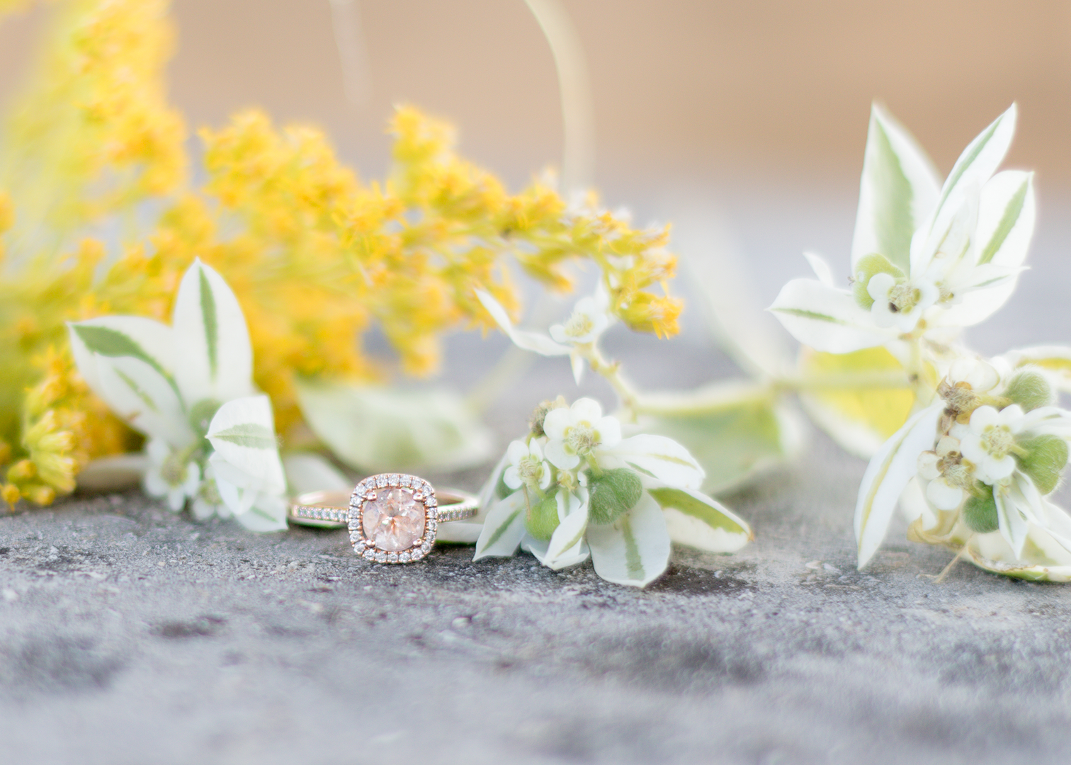 engagement-ring-rose-gold-lawrence-photo