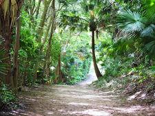 Отдых на Бермудских островах