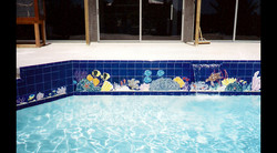 Bachelor Party Swimming Pool & Spa