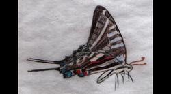 Spa Exterior Art, Butterfly