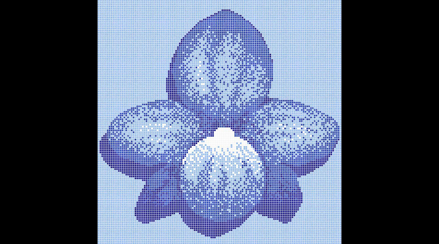 Orchid Pool Computer Rendering