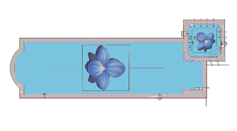 Orchid Swimming Pool Mockup