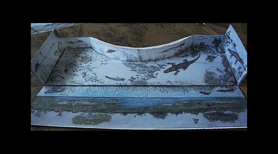 Overflow Pool paper mockup