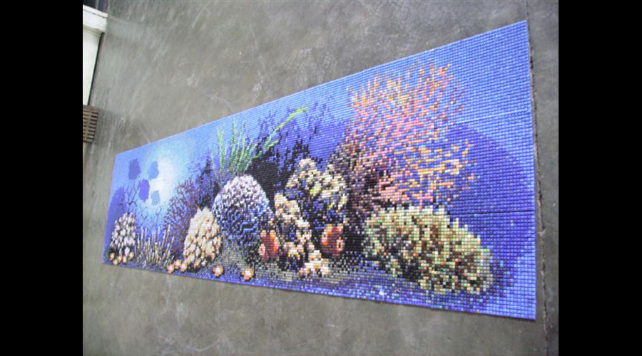 Coral Reef Swimming Pool Mural