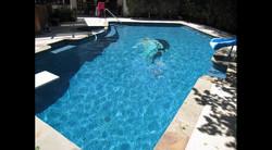 Blue Mermaid Swimming Pool 9