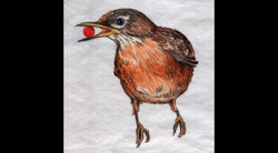 Spa Exterior Art, Robin with a Berry