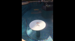 Orchid Pool with Hummingbird Tabletop Mosaic