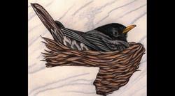 Spa Exterior Art, Baby Robin in Nest