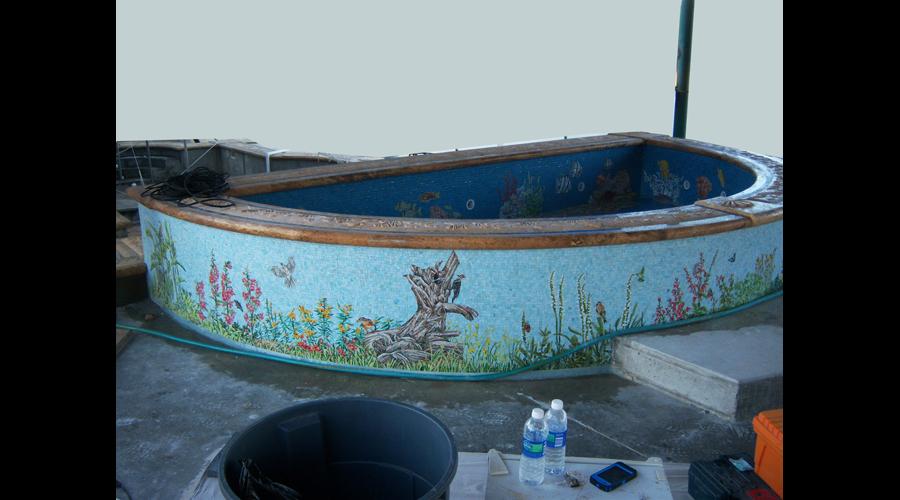 Swimming Pool raised Spa Exterior
