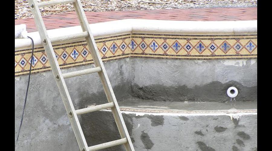 Facing Swans Pool & Spa waterline