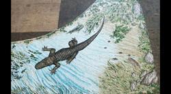 Life Sized Florida Alligator