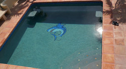 Fred the Shark Custom Glass Mosaic Tile Pool Mural for Cabo MX Residence