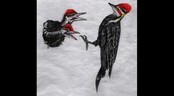 Spa Exterior Art, Woodpecker Babies