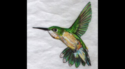 Spa Exterior Art, Green Hummingbird