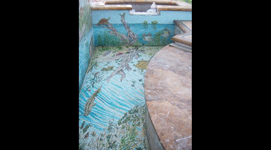 Swimming Pool Installation