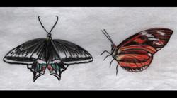 Spa Exterior Art, Butterflies