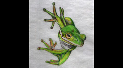 Spa Exterior Art, Treefrog