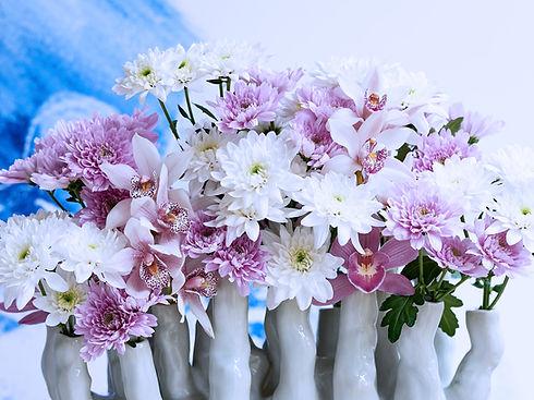 retine-flowers-06.jpg
