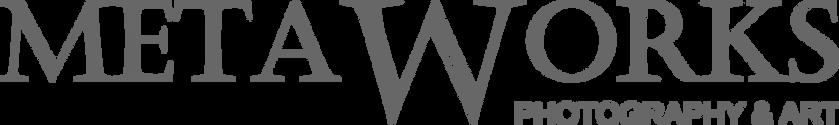 Metaworks_website-gray2.png