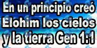 gen 1 1.png
