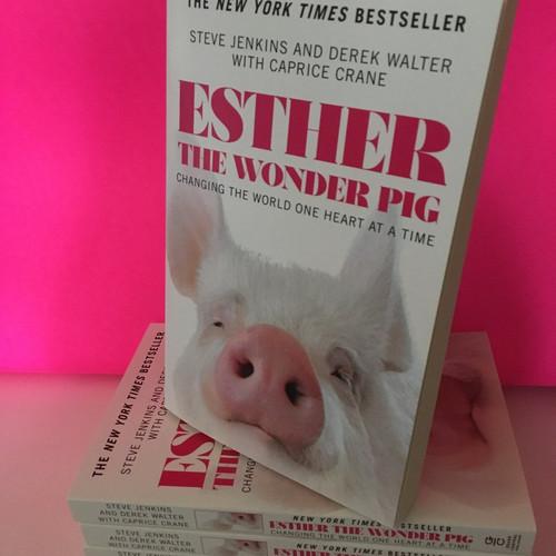 Esther The Wonder Pig Misc