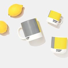 Pantone yellow grey mugs flatlay.jpeg