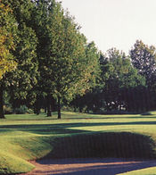 Meadowbrook course.jpg
