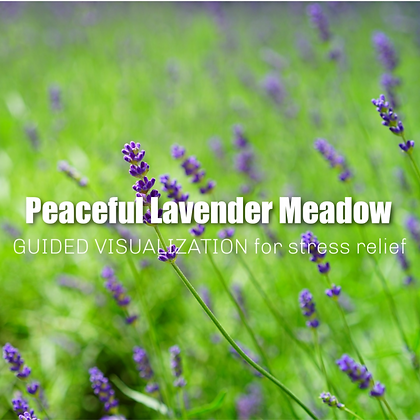Peaceful Lavender Meadow Guided Visualization for Relaxation MP3